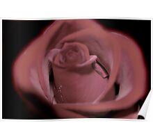 Muted Red Rose Poster
