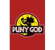 Puny God Photographic Print