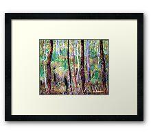 Grass Trees Cunningham's Gap Queensland [Pastel] Framed Print
