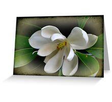 Sweet Bay Magnolia Greeting Card