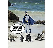 The Wrong Penguin! Photographic Print