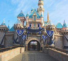 Sleeping Beauty Castle #6 by disneylandaily