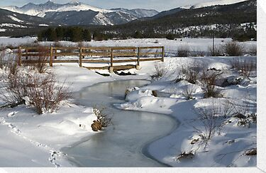 Winter in Colorado by Patricia Montgomery