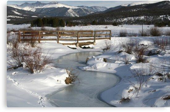 Winter in Colorado by Patricia Montgomery
