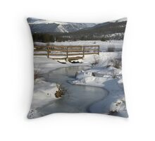 Winter in Colorado Throw Pillow