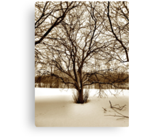 Crabapple Trees Early Spring Snow Canvas Print