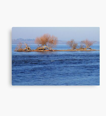 Islet Survivors Canvas Print