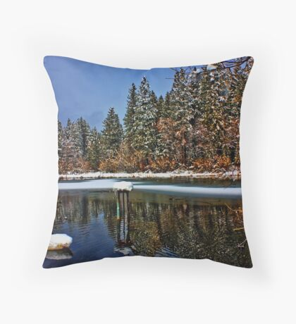 A Frogs Pond Throw Pillow