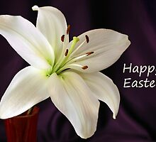 Happy  Easter Lily by Sheryl Kasper