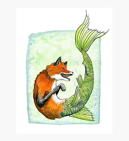 River Fox Photographic Print