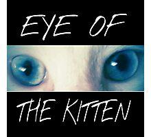 Eye of the Kitten Photographic Print
