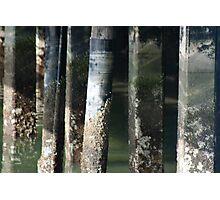 Cement Patina Photographic Print