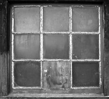 Window by Scott Johnson