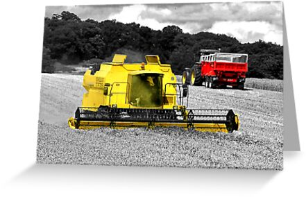Harvest For The World by Colin  Williams Photography
