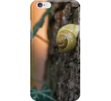 Snail Shell iPhone Case/Skin
