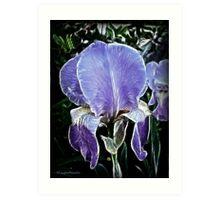 Iris of Purple Persuation Art Print