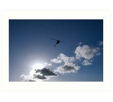 Silhouetted Flight Art Print