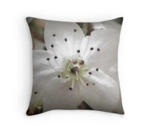 Softened Petals Throw Pillow