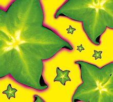 Star fruit by Tony  Hardy