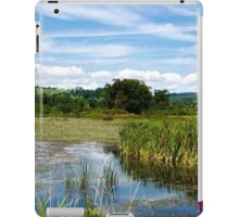 The Perfect Summer Day iPad Case/Skin