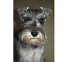 Portrait of Lily Photographic Print
