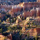 Queen's Garden - Bryce Canyon by Stephen Vecchiotti