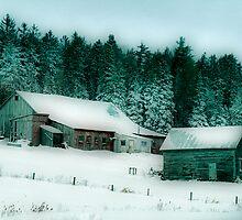 Old Barn In Winter by Deborah  Benoit