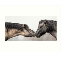 Small Horses, Big Attitudes Art Print