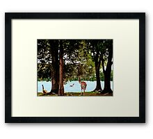 There you are... we've been waiting for you Framed Print