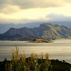 Lake Pedder Tasmania  by Mark Ashton