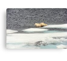 Prudhoe Bay Canvas Print