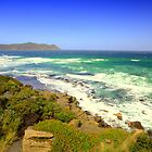South East Cape Tasmania by Mark Ashton