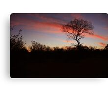 Bush, Northern Territory Canvas Print