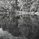 Across The Pond B&W by LeeMascarello