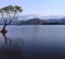Lake Wanaka Pre-Dawn, South Island, New Zealand by Michael Boniwell