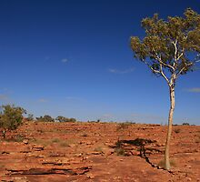 Kings Canyon, Northern Territory by mapartstudio