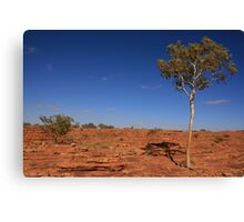 Kings Canyon, Northern Territory Canvas Print