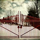 The red gate by VLFatum