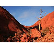 Kata Tjuta, Northern Territory Photographic Print