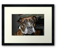 Yes? Framed Print