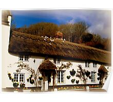 Cottage in Branscombe Poster