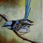 "Blue Wren  ""Perfect View""  SOLD by sandysartstudio"
