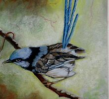 "Blue Wren  ""Perfect View""  SOLD by sandysartstudio"