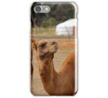 Camels iPhone Case/Skin