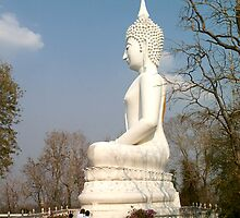 Khon Kaen Buddha by Matt Emrich