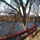 Along the Fox River by Marija