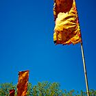 prayer flags in the wind by pmacimagery