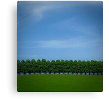 sentinels Canvas Print