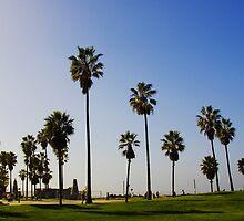 Venice Beach Ca.  by Gordon Pressley