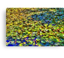 Lily Pond at Spur Cross Ranch Canvas Print